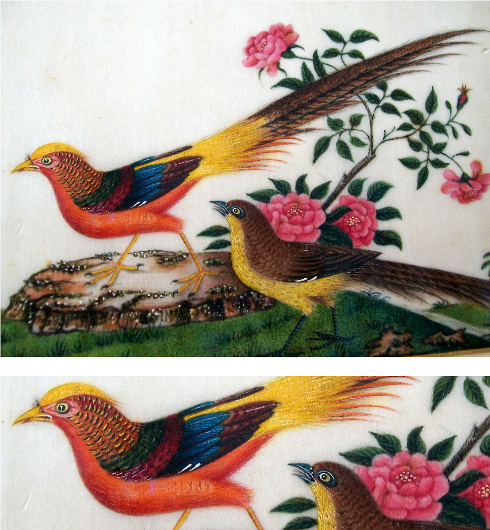 Qing-dynasty-1644-1911-Chinese-pit-paper-painting-depicting-gold-pheasant